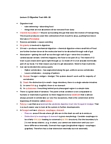 EEB202H1 Lecture Notes - Rumen, Starch, Esophagus