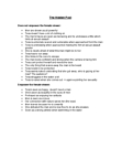 Week 14 Tutorial Notes.docx