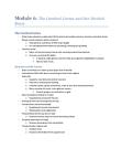 PSYC 1000 Chapter Notes -Frontal Lobe, Temporal Lobe, Auditory Cortex