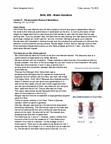 BIOL 202 Lecture Notes - Lecture 3: Nettie Stevens, Thomas Hunt Morgan, Allosome