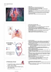 Health Sciences 2300A/B Lecture Notes - Inferior Vena Cava, Left Coronary Artery, Pulmonary Valve
