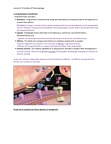 PSYC62H3 Lecture Notes - Lecture 2: Receptor Antagonist, Inverse Agonist, Partial Agonist