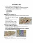 PSYC 211 Lecture Notes - Lecture 12: Pedunculopontine Nucleus, Circadian Rhythm, Thalamus