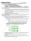 BIOB11H3 Study Guide - Zygote, Wild Type, Chromatin