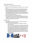 PSYCH 1XX3 Lecture Notes - Subjective Constancy, Optical Illusion, Gestalt Psychology