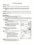 PSYC 221 Study Guide - Final Guide: Corpus Callosum, Axon Terminal, Neocortex