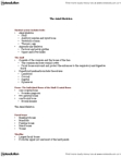BIOB32H3 Lecture Notes - Xiphoid Process, Frontal Bone, Cranial Cavity
