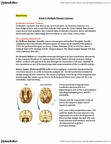 PSYC 2330 Lecture Notes - Word Stem, Free Recall, Striatum