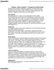 FSN 232 Study Guide - Valerie Steele, Tape Measure