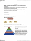 MHR 405 Chapter Notes - Chapter 5: Social Cognitive Theory, Organizational Justice, Balanced Scorecard