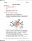 Biology 1002B Study Guide - Final Guide: Tumor Suppressor Gene, Natty, Synonymous Substitution