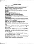 Kinesiology 2241A/B Study Guide - Angular Velocity, Angular Acceleration, Gyroscope