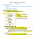 Biology 2483A Chapter 19: Species Diversity in Communities