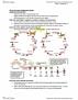 LIFESCI 7C Chapter Notes - Chapter Week 2: Peptide Hormone, Blood Sugar, Signal Transduction