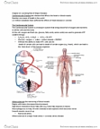 BPK 140 Lecture Notes - Blood Vessel, Cardiovascular Disease, Smooth Muscle Tissue