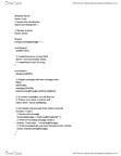 IAT 267 Study Guide - Final Guide: Ellipse
