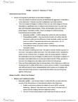 POLB81H3 Lecture Notes - Lecture 6: Al-Qaeda, Collective Security, Global Issue