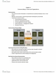 BUS 272 Lecture Notes - Organizational Communication, The Automatic, Media Richness Theory