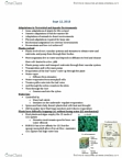 BIOL 2000 Lecture Notes - Lecture 3: C3 Carbon Fixation, Leaf, Vascular Bundle