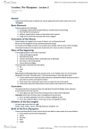 CLASSICS 2D03 Lecture Notes - Typhon, Castration, Comefrom