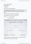PSYC10003 Lecture Notes - Lecture 3: Anterograde Amnesia, Temporal Lobe, Prefrontal Cortex