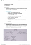 PSYC10003 Lecture Notes - Lecture 4: Anterograde Amnesia, Implicit Memory, Explicit Memory