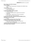 ZOO 2090 Lecture Notes - Shoulder Girdle, Cleithrum, Tetrapod