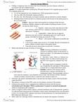 BIO206H5 Study Guide - Midterm Guide: Sigma Factor, Eukaryotic Transcription, Antisense Rna