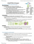BPK 110 Study Guide - Final Guide: Salt, Biotin, Hallucination