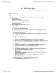ANTB15H3 Study Guide - Final Guide: Melanin, Ultraviolet, Melanocyte