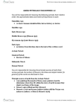 CLAS 203 Study Guide - For Dummies, Paleolithic, Neolithic
