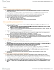 COMMERCE 4SA3 Chapter Notes - Chapter 5: The Home Depot, Guanxi, Starbucks