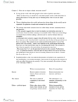 POLS 2940 Chapter Notes - Chapter 2: Relativism