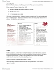 ECH 2330 Lecture Notes - De Jure, Autocracy, Non-State Actor