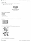 LIFESCI 3B03 Lecture Notes - Epigenetics, Methylation, Basic Helix-Loop-Helix