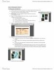 BIOB50H3 Study Guide - Allopatric Speciation, Biogeography, Palearctic Realm