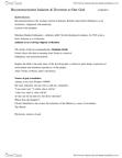 RELI 2110 Lecture Notes - Kabbalah