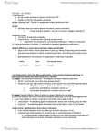 SOCA02H3 Lecture Notes - Lecture 6: Unintended Consequences, Sex Tourism, Ethnic Succession Theory