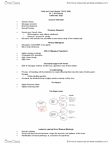 CHYS 1F90 Lecture Notes - Brainstem, Natural Experiment, Synaptogenesis
