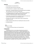 PHI 1104 Lecture Notes - Pythagoreanism