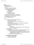 CAS BI 108 Study Guide - Midterm Guide: Facilitated Diffusion, Endocytosis, Osmosis