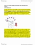 BIOC34H3 Lecture 4: Lecture 4 Notes 2019