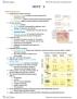 BIO SCI N165 Study Guide - Quiz Guide: Lamellar Corpuscle, Hair Follicle, Nerve Plexus