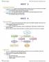 BIO SCI N165 Study Guide - Quiz Guide: Hyperkinetic Disorder, Mammillary Body, Hemiballismus