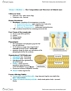 BIOLOGY 1A03 Lecture Notes - Lecture 1: Respiratory Tract, Lipid Bilayer, Endoplasmic Reticulum