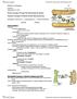 BIOB10H3 Lecture Notes - Lecture 5: Golgi Apparatus, Endomembrane System, Cell Membrane