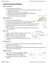 HMB300H1 Lecture Notes - Lecture 8: Schaffer Collateral, Synaptic Tagging, Glucocorticoid Receptor