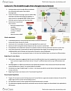HMB300H1 Lecture Notes - Lecture 6: Neurotrophic Factors, Limb Bud, Fndc5