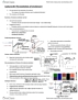 BIO220H1 Lecture Notes - Lecture 20: Avian Influenza, Influenza A Virus Subtype H5N1, Coevolution