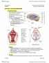 NROB60H3 Lecture Notes - Lecture 3: Arachnoid Granulation, Choroid Plexus, Fourth Ventricle